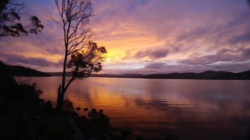 Bikram Yoga and Bushwalking Retreat